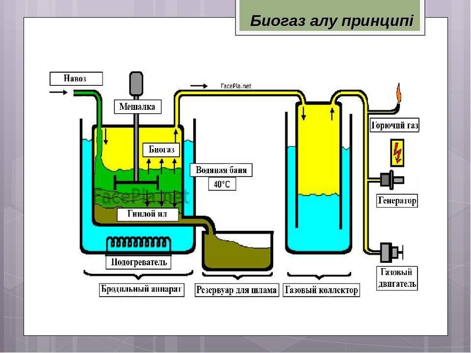 Получение биогаза из навоза в домашних условиях