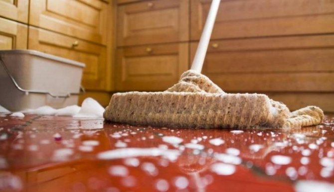 Народные приметы и суеверия про уборку: почему нельзя вечером выносить мусор и мыть полы