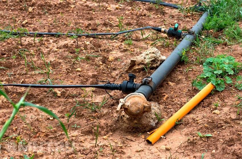 Какие трубы выбрать для полива огорода - полезные советы