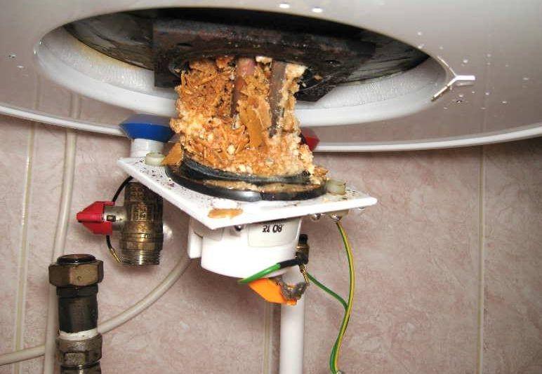 Ремонт водонагревателя: замена тена в водонагревателе своими руками + видео