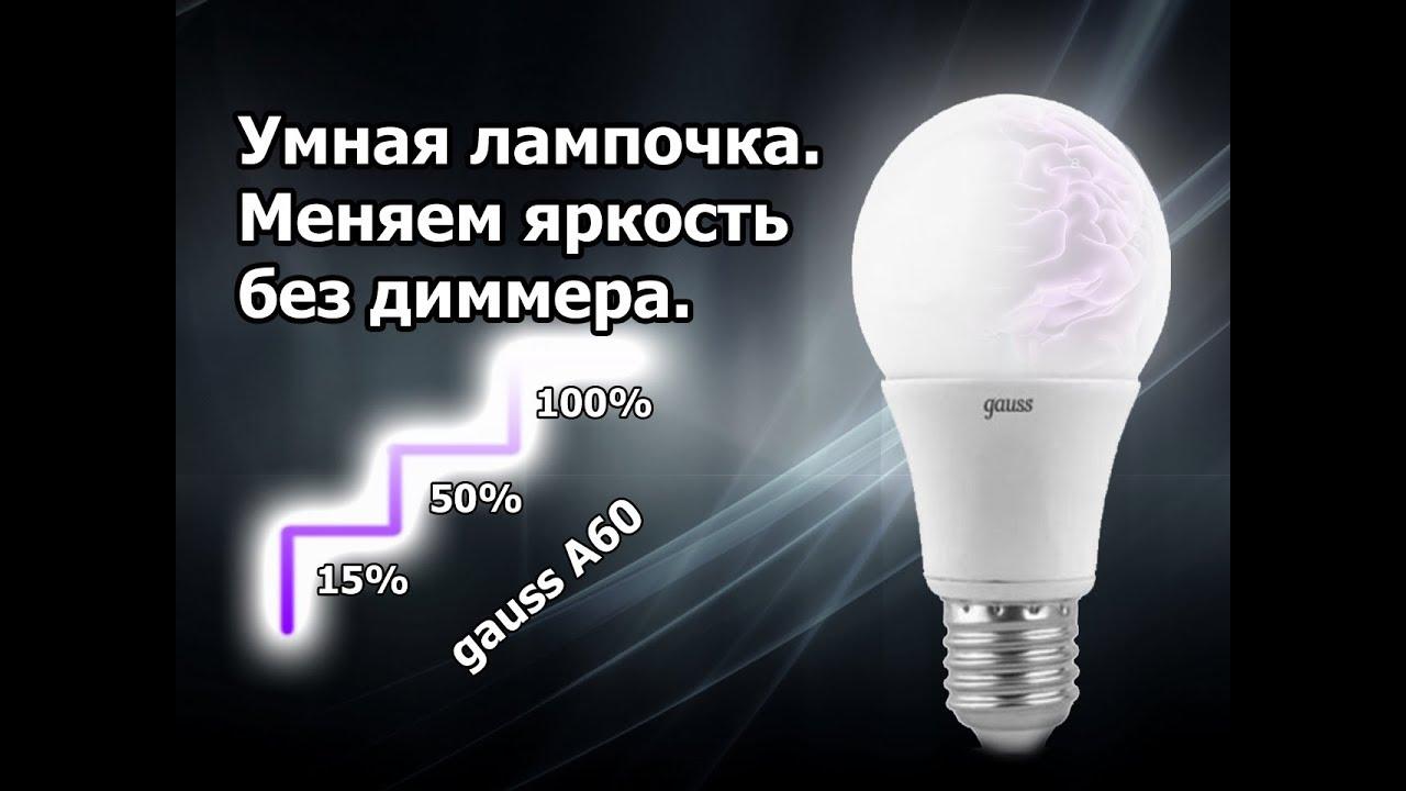 Диммируемые светодиодные лампы: как работает + как выбрать лучшую - точка j