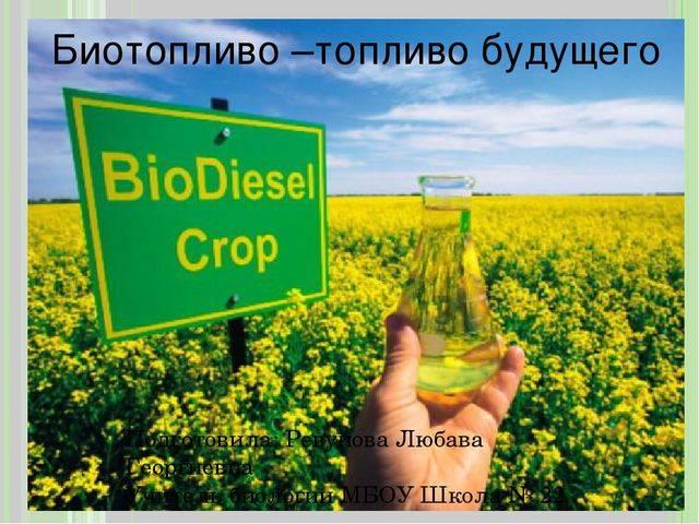 Биотопливо. виды и типы экологического топлива