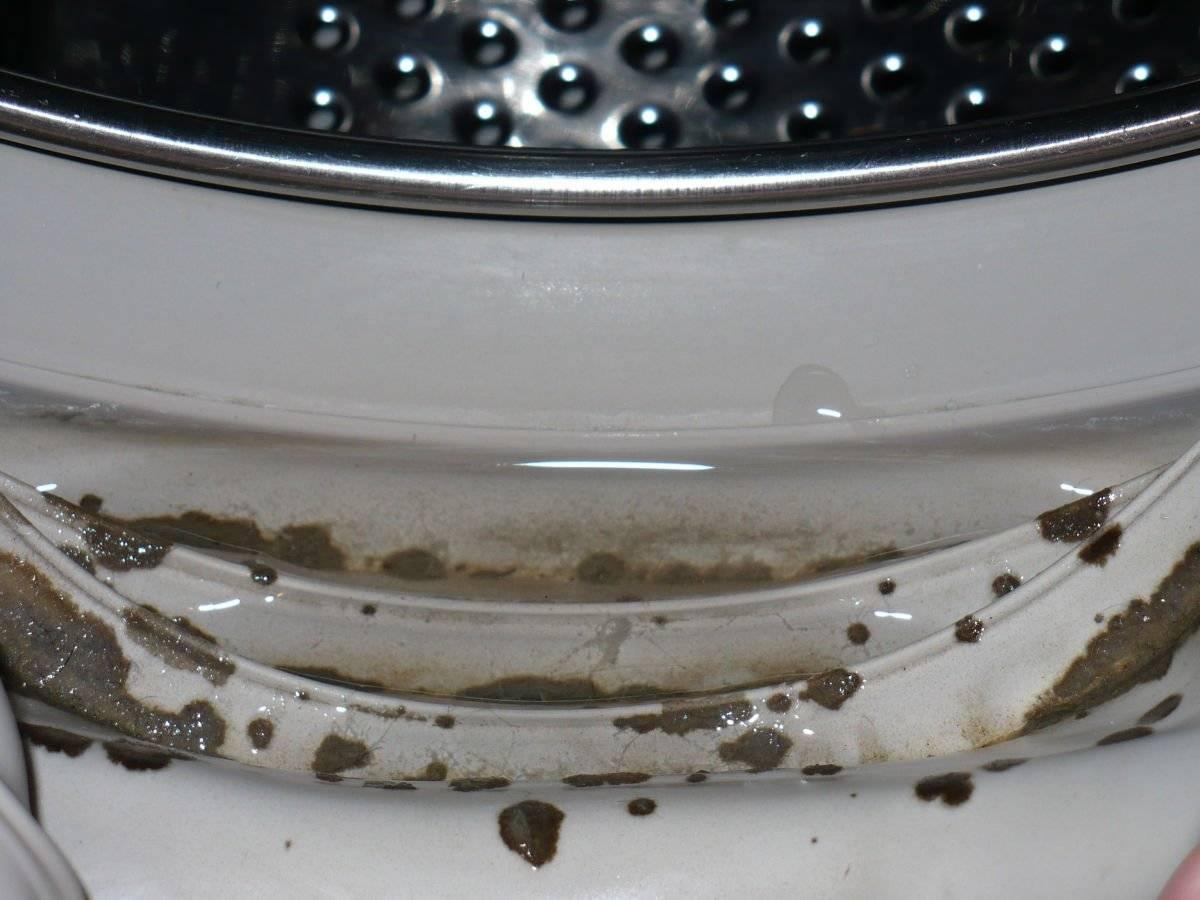 Плесень в стиральной машине, как избавиться: народные и химические стредства