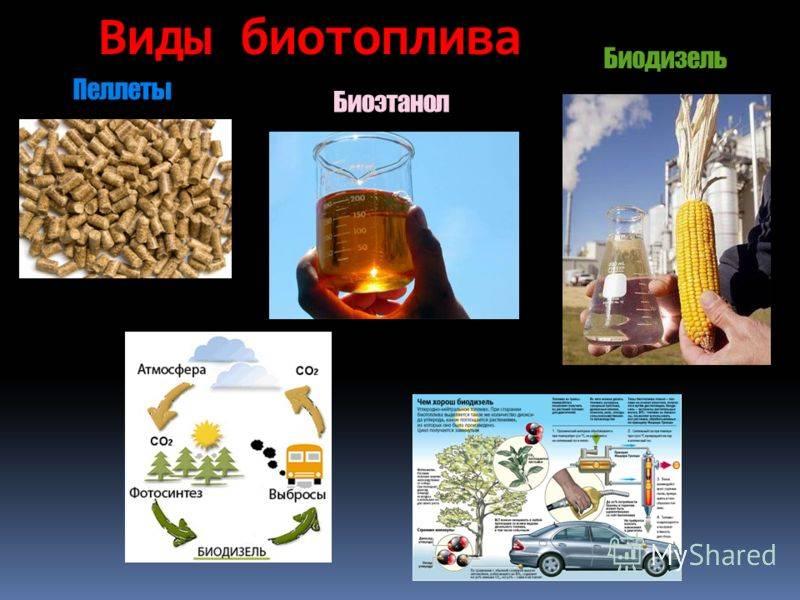 Биотопливо своими руками: жидкое для камина, газ из навоза, твердое из древесного угля