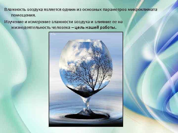 Интересные факты о влажности воздуха: значение для человека, метеорологические данные