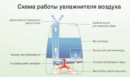 Как пользоваться увлажнителем воздуха: тонкости эксплуатации и заправки климатических приборов