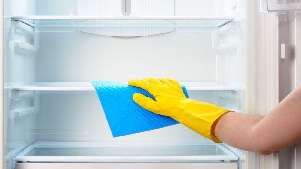 Чем и как правильно мыть холодильник внутри и снаружи: после разморозки, средства для мытья, методы, полезные советы