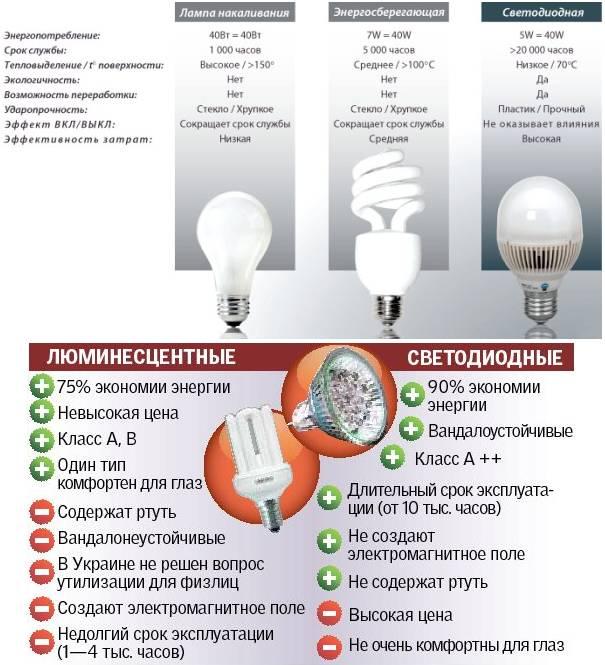 Энергосберегающие лампы: виды, цены и различия