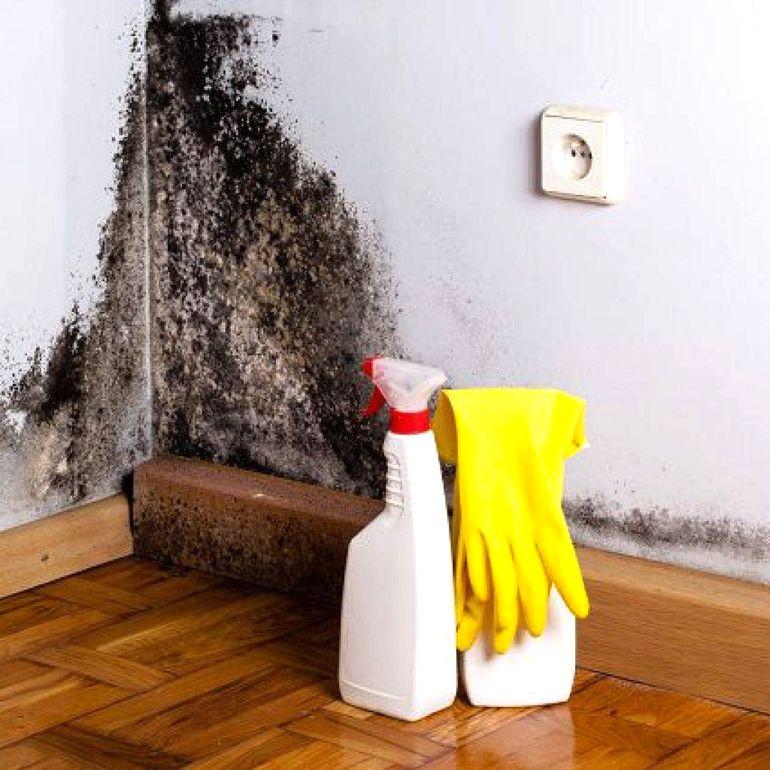 Как избавиться от сырости в частном доме и на даче народными средствами (видео)