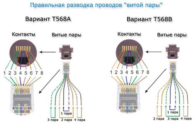 Как подключить розетку интернет: схемы и правила подключения