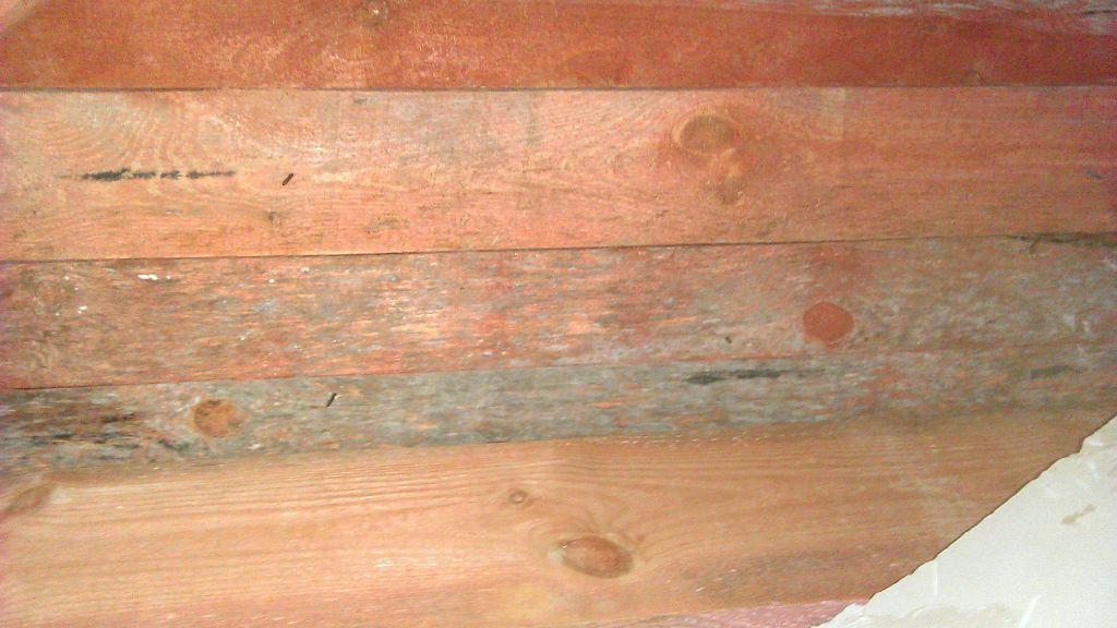 Как и чем убрать плесень с дерева в домашних условиях?