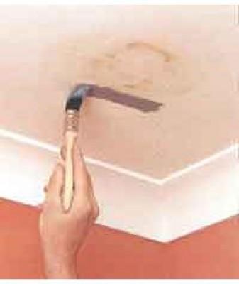 Как избавиться от плесени на потолке?