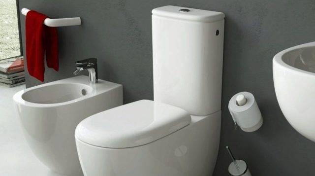 Безободковый унитаз: плюсы и минусы современного сантехнического оборудования – советы по ремонту