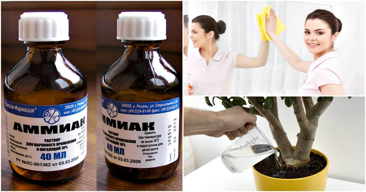 Как лучше применять нашатырный спирт (аммиак) от тараканов