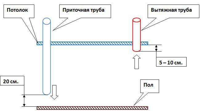 Вытяжка в курятнике: лучшие способы обустройства вентиляционной системы в птичнике