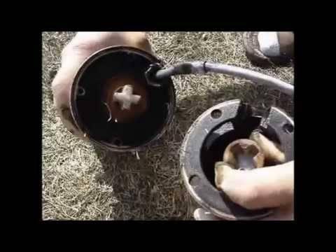 Как провести ремонт дренажного насоса своими руками