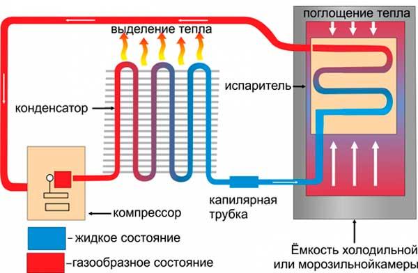 Как работает холодильник: устройство и принцип работы основных типов холодильников