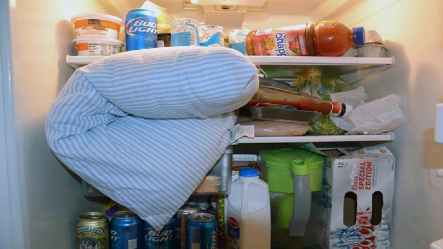 Что кроме еды нужно хранить в холодильнике