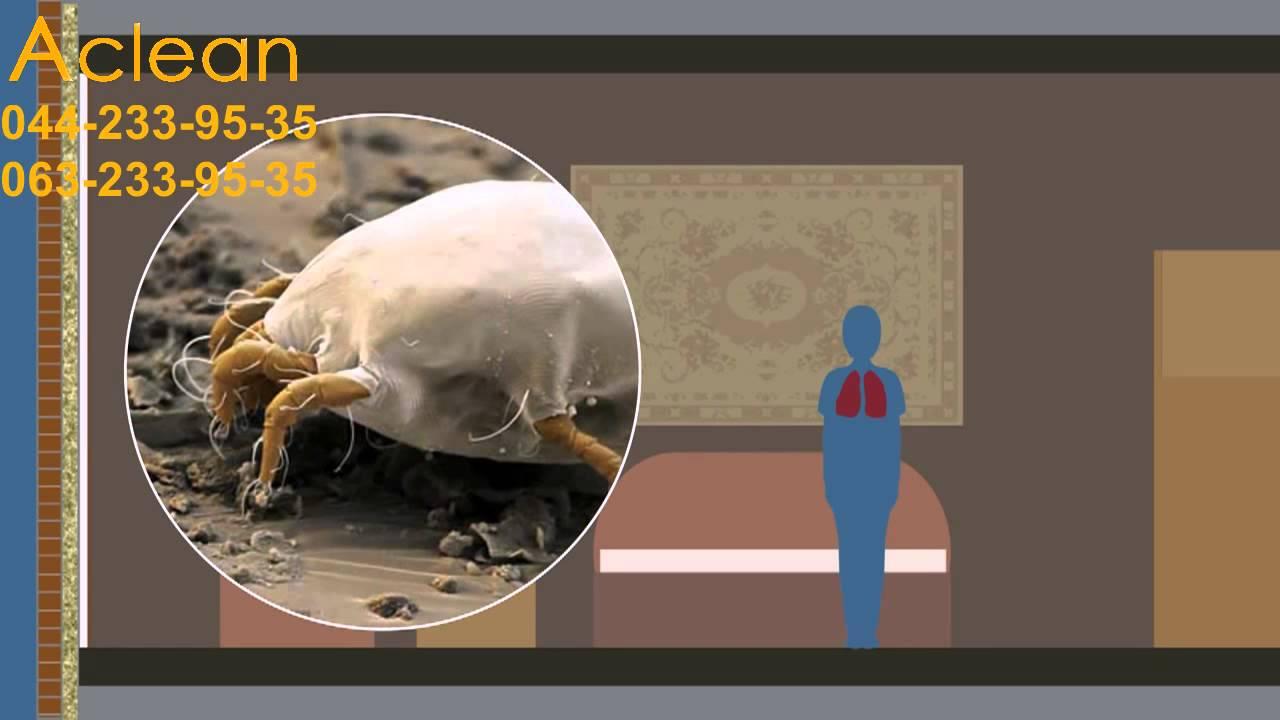 Состав минеральной ваты и ее вред для здоровья – насколько оправданы мифы о материале