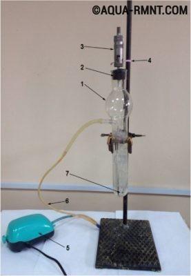 Ученые из России создали простые и точные датчики для обнаружения хлора в воде