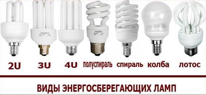 Энергосберегающие лампы: основные виды их характеристики и советы как правильно выбрать современную лампу (95 фото)