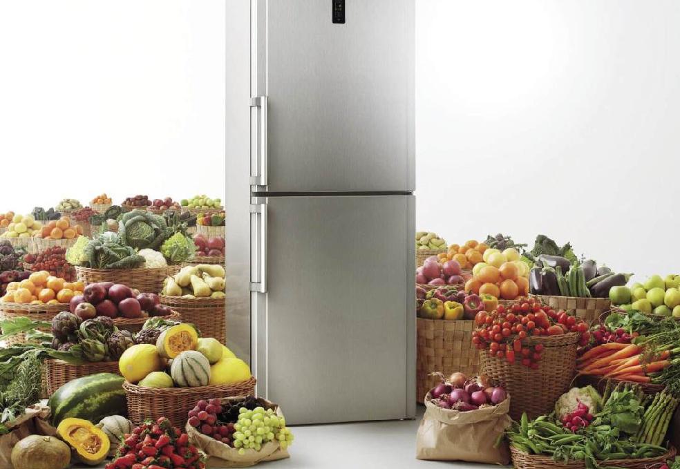 Холодильники «дон»: отзывы, обзор 5-ки лучших моделей, рекомендации по выбору