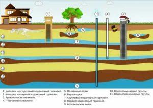 Как найти воду для колодца: обзор самых эффективных способов поиска воды на участке