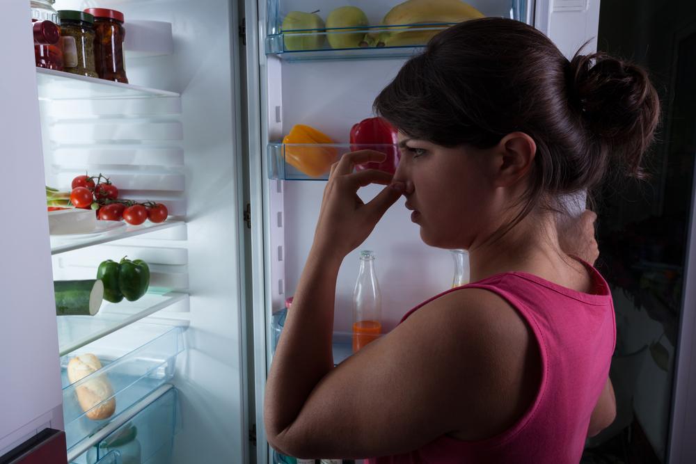 Как убрать запах из холодильника быстро и народными средствами