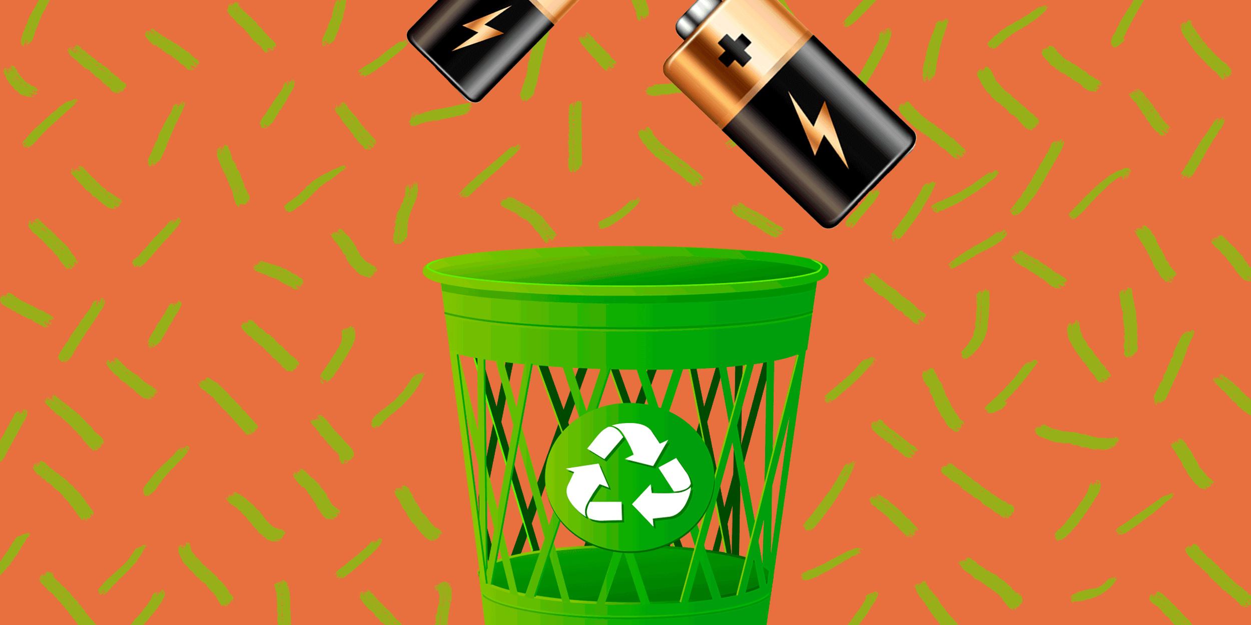 Все о раздельном сборе отходов: ответы на самые популярные вопросы москвичей