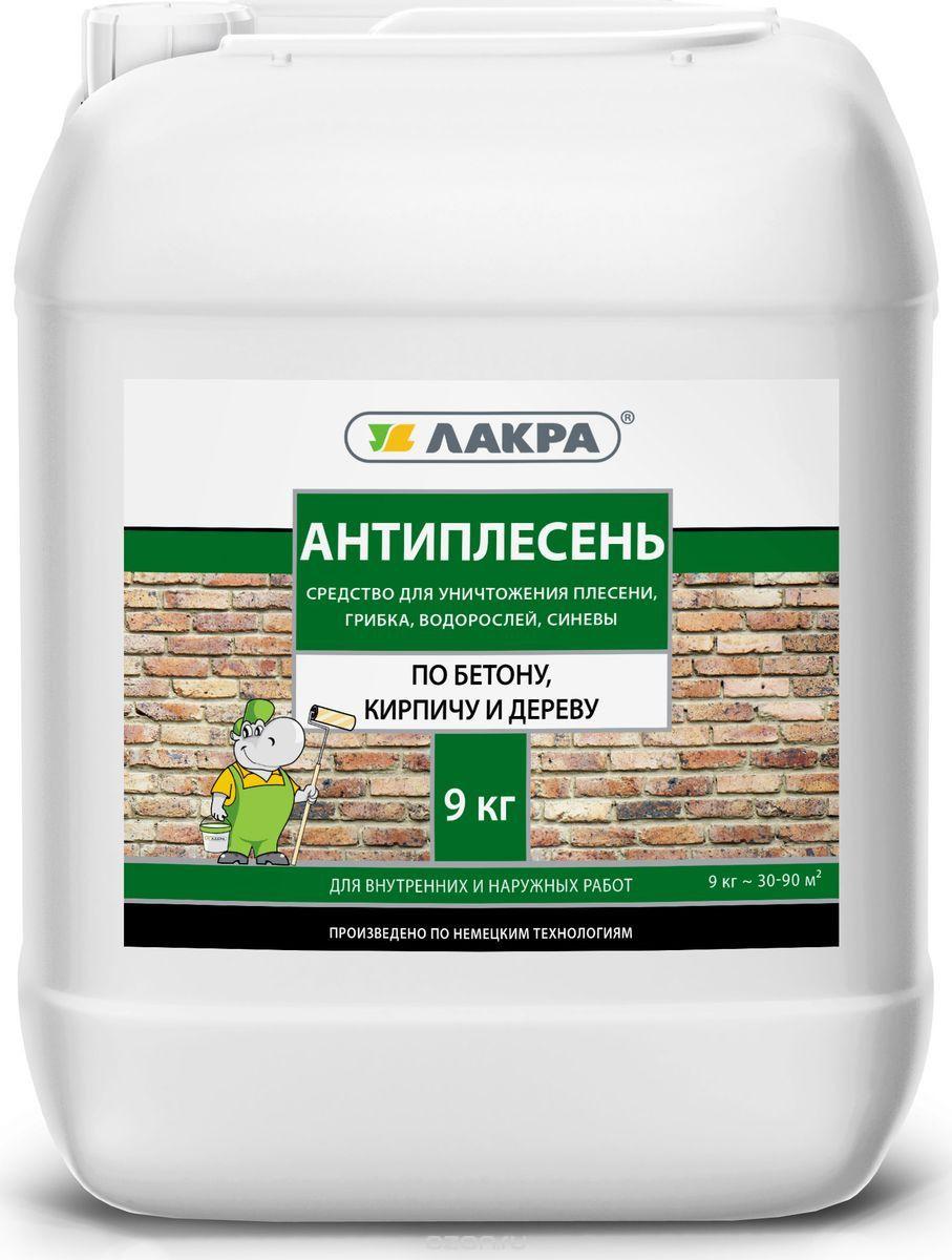 Виды антигрибковых средств для стен: состав, применение