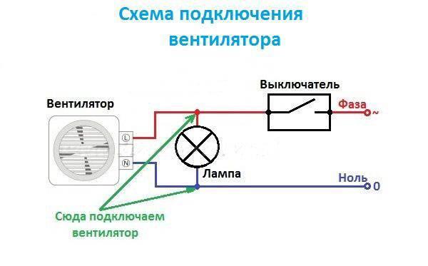 Потолочные вентиляторы: виды, тонкости выбора и эксплуатации