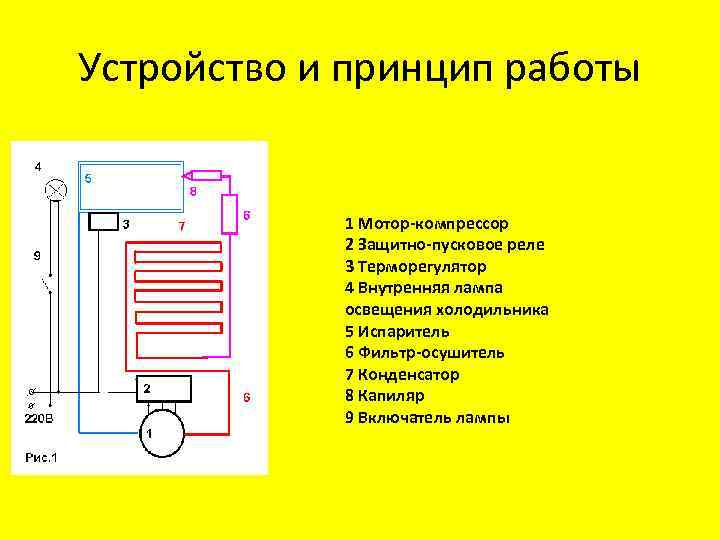 Принцип работы холодильника: устройство и схема