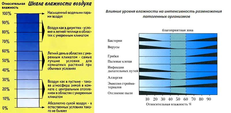 Влияние влажности воздуха на жизнедеятельность человека | обучонок