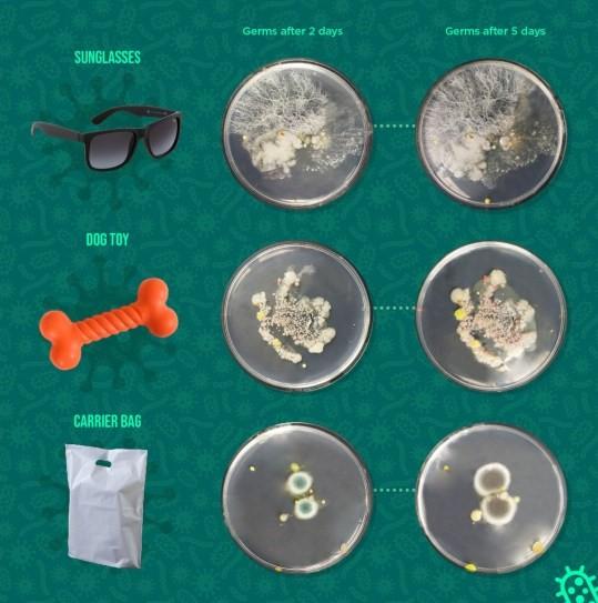 Пять надежных способов избавиться от микробов и список самых опасных предметов в доме