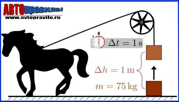 Как правильно перевести квт в лс, история появления лошадиной силы как единицы и правила расчета