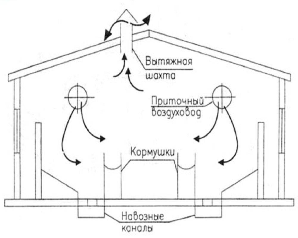 Вентиляция коровника своими руками: виды систем, нормы воздухообмена + порядок обустройства системы
