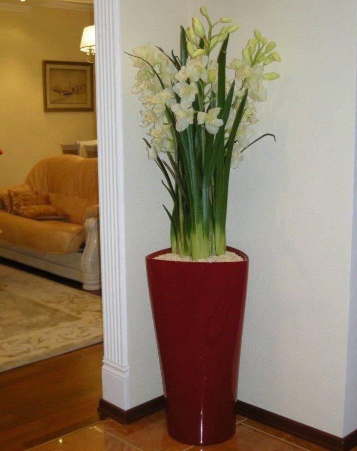 Искусственные цветы дома — приметы и их толкования, какие растения лучше выбрать