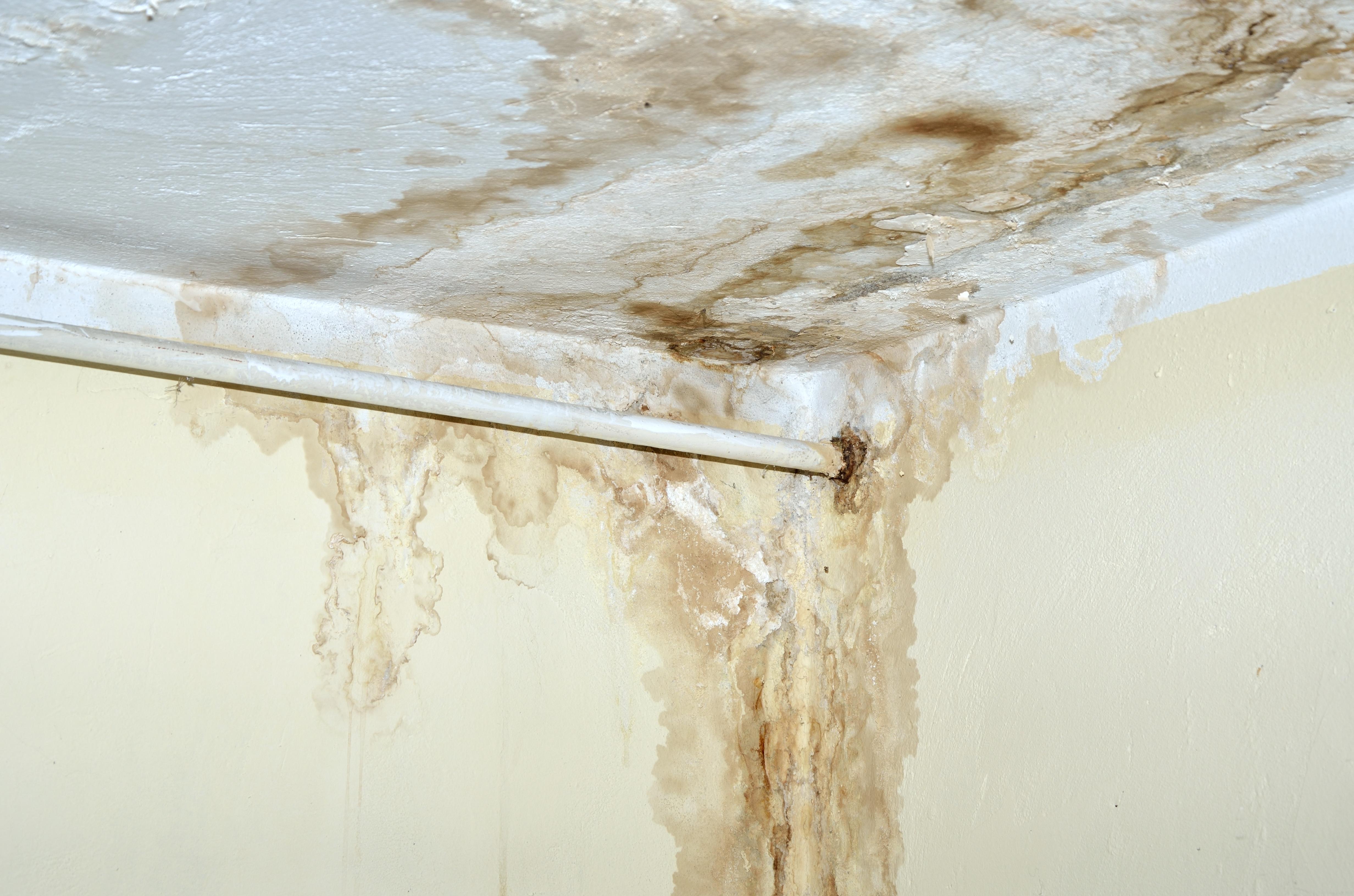 Пятна на потолке после затопления: как вывести желтые следы, способы ремонта для различных типов конструкций