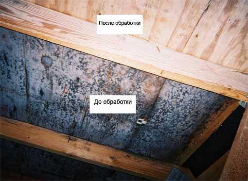 Как убрать грибок с дерева своими силами: причины, 25 лучших средств в домашних условиях