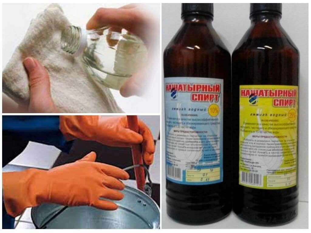 Нашатырный спирт от тараканов: как применять, рецепт, преимущества и недостатки, отзывы