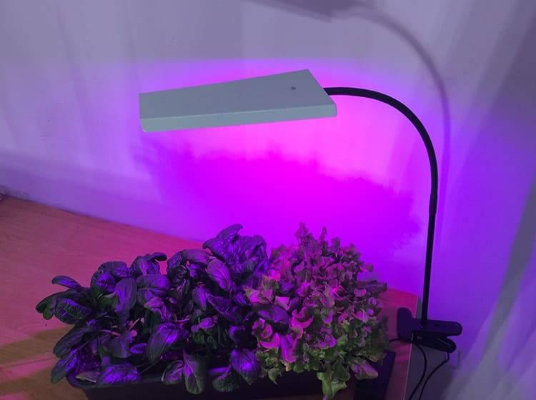 Все об ультрафиолетовых лампах и их применении в доме и медицинских учреждениях