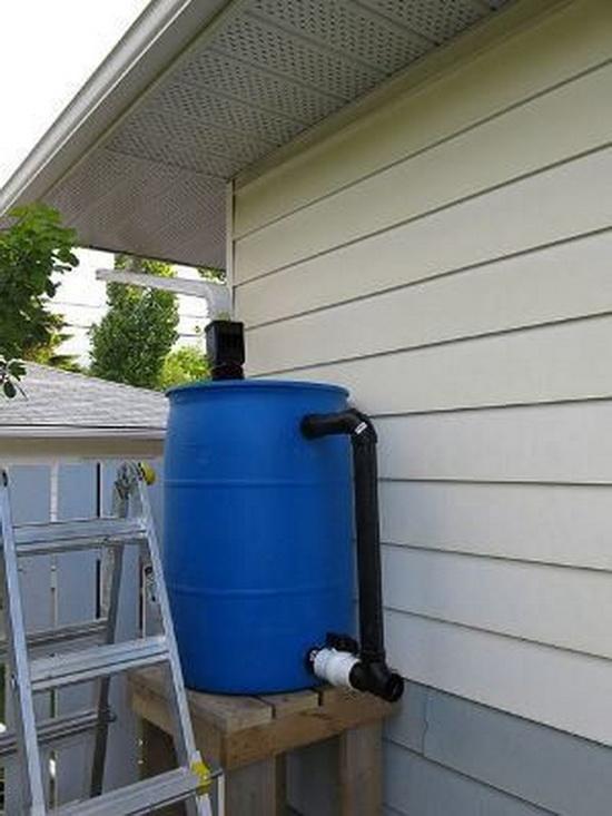 Сбор дождевой воды для полива сада и огорода