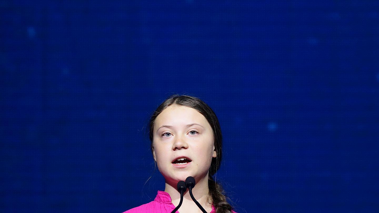 Грета тунберг: речь в оон и биография молодой экоактивистки