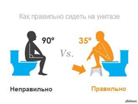 Почему нельзя долго сидеть на унитазе, особенно мужчинам