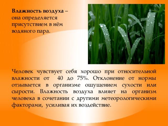 Исследование влияния влажности и температуры воздуха на здоровье человека