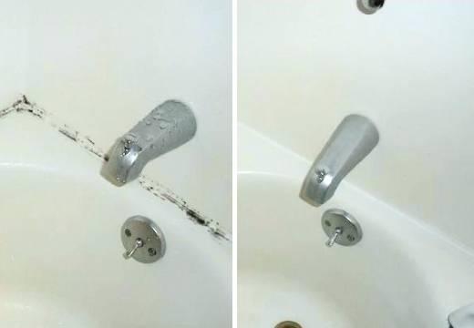 Как убрать грибок в ванной: обзор средств-профессионалов и любителей