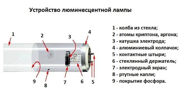 Принцип работы стартера люминесцентной лампы - всё о электрике