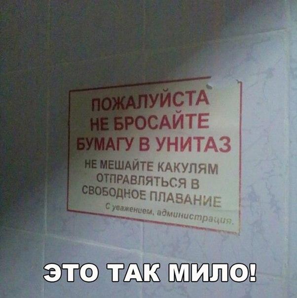 Можно ли смывать в унитаз туалетную бумагу
