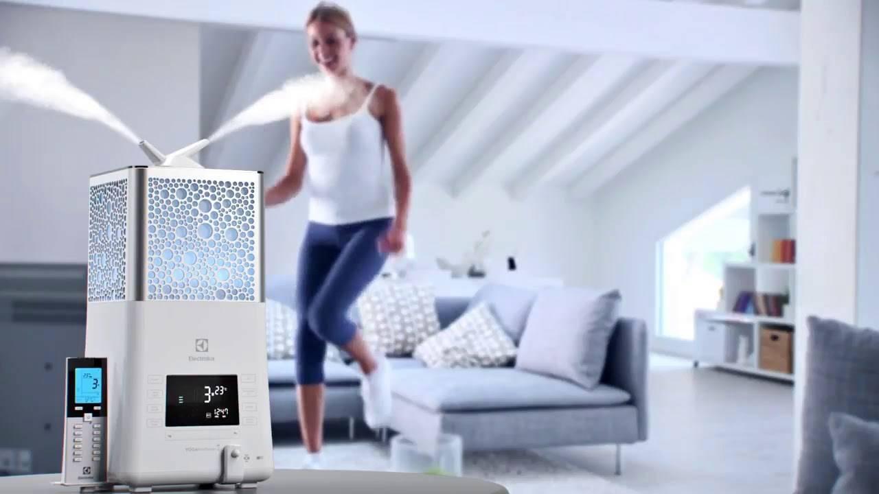 Увлажнитель воздуха для квартиры: польза и вред