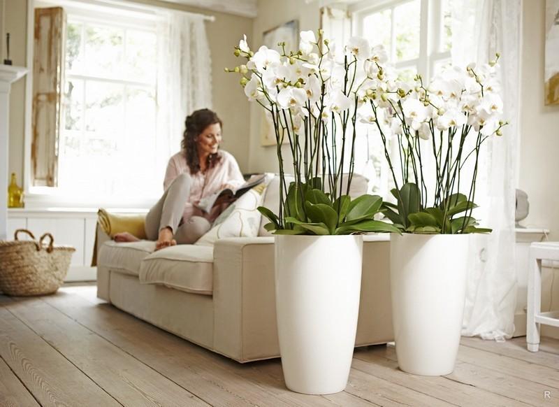 Можно ли дома держать искусственные цветы